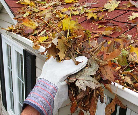 gutter cleaning Dallas